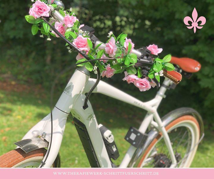 Unser Praxis-Fahrrad