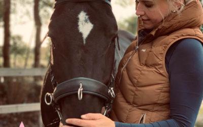 Ganz neu bei uns: Schritt für Schritt- alles Rund ums Pferd!