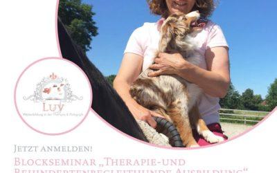 +++Therapie – und Behindertenbegleithunde Ausbildung+++